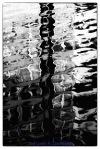WaterReflectionsWM